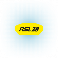 Pagid RSL29 logo