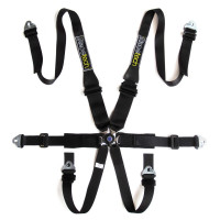 Racetech Pro 6-point FHR Lightweight Harness